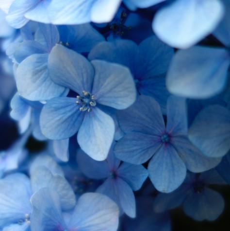 Jak ukoić własne cierpienie? Ćwicz współczucie dosiebie (autoempatię)